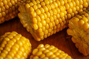 Cobs of sweet corn