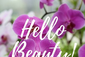 Hello Beauty Social Media Graphic