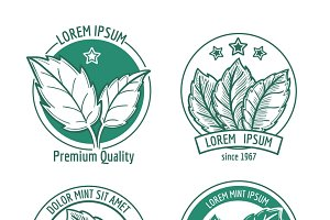Vector mint leaf logo icons