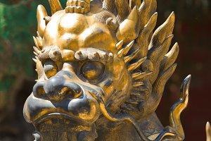 Bronze lion in China Emperor garden