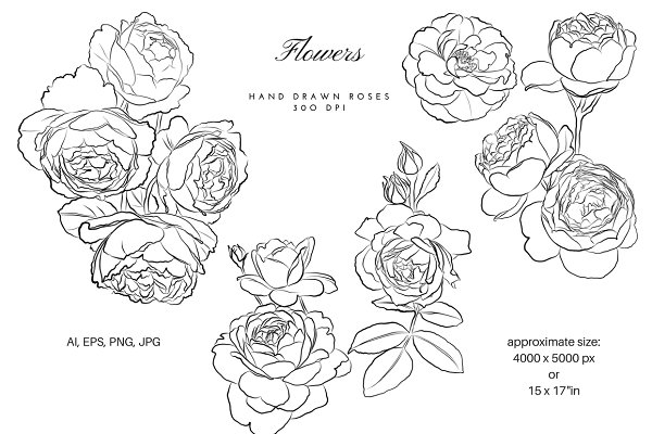 Outlined Flowers