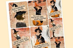 Wicked Vixens Journal ATC Cards