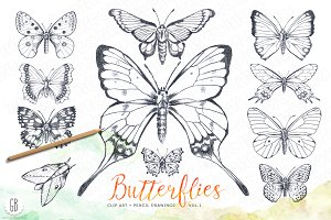 Butterflies, pencil hand drawn