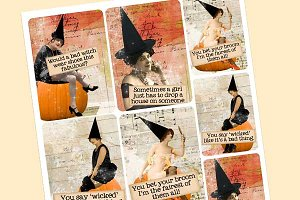 Wicked Vixens 2 ATC/Journal Cards
