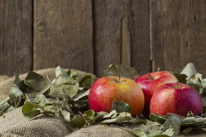 Apples on sackcloth