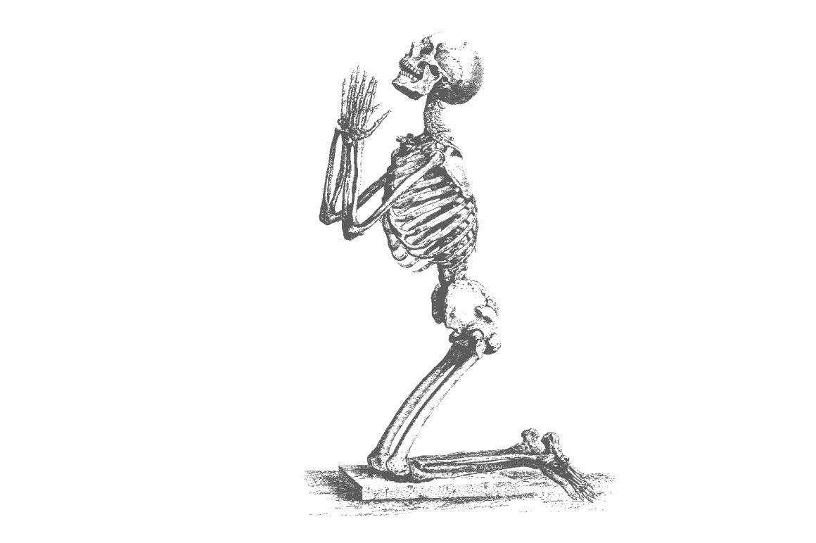 Praying Skeleton Vector Illustrations Creative Market