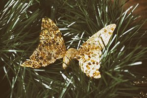 Christmas decoration with golden butterfly on Christmas tree.
