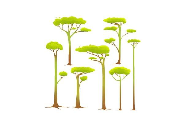 Cartoon Trees Collection Drawing Pre Designed Illustrator Graphics Creative Market Summer trees set isolated dragon baobab sakura vector. cartoon trees collection drawing