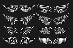 Wings emblem black elements