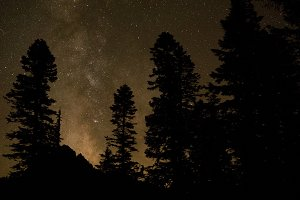 Milky Way Beyond the Pines