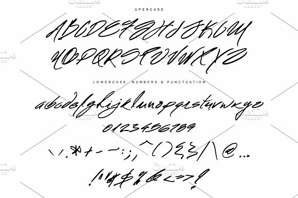 Mr Roosevelt Handwritten Script Fonts Creative Market