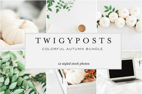 Colorful Autumn Stock Photo Bundle