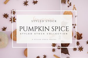 Pumpkin Spice Styled Stock Photo