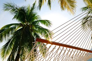 Relax in a hammock on a holiday