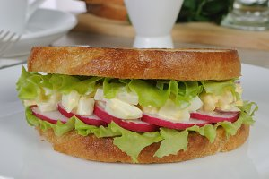 Egg sandwich with radish