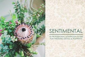 Sentimental - Lightroom Presets