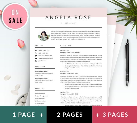 Professional Resume/CV Template ~ Resume Templates ~ Creative Market