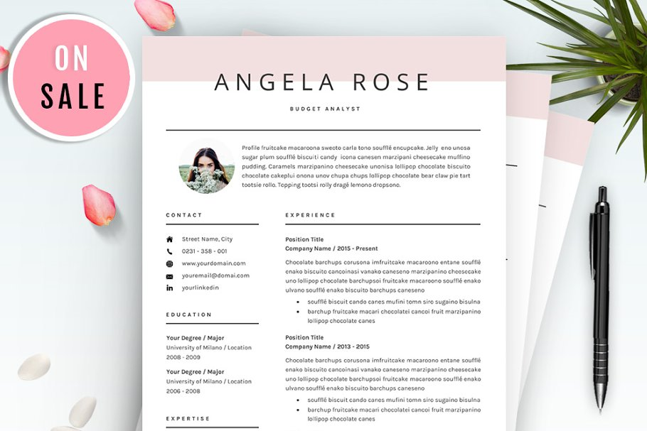 Professional Resume/CV Template ~ Resume Templates