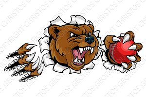 Bear Holding Cricket Ball Breaking Background