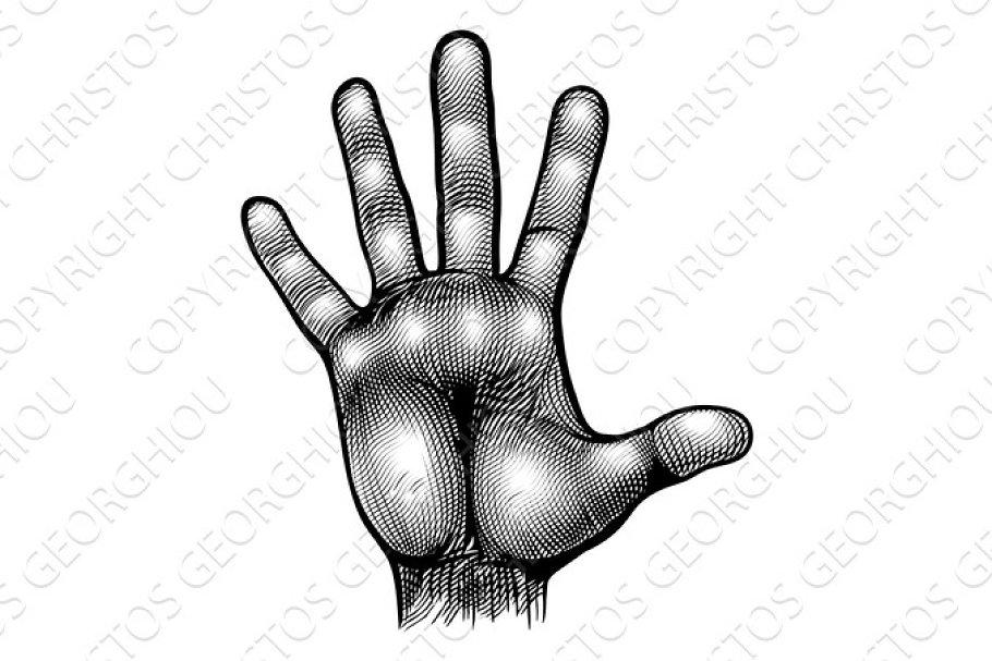 Hand Palm Body Part Vinatge Woodcut