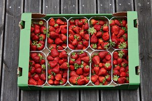 Strawberries containers for sale
