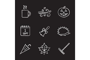 Autumn season chalk icons set