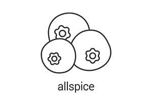 Allspice, pimento linear icon