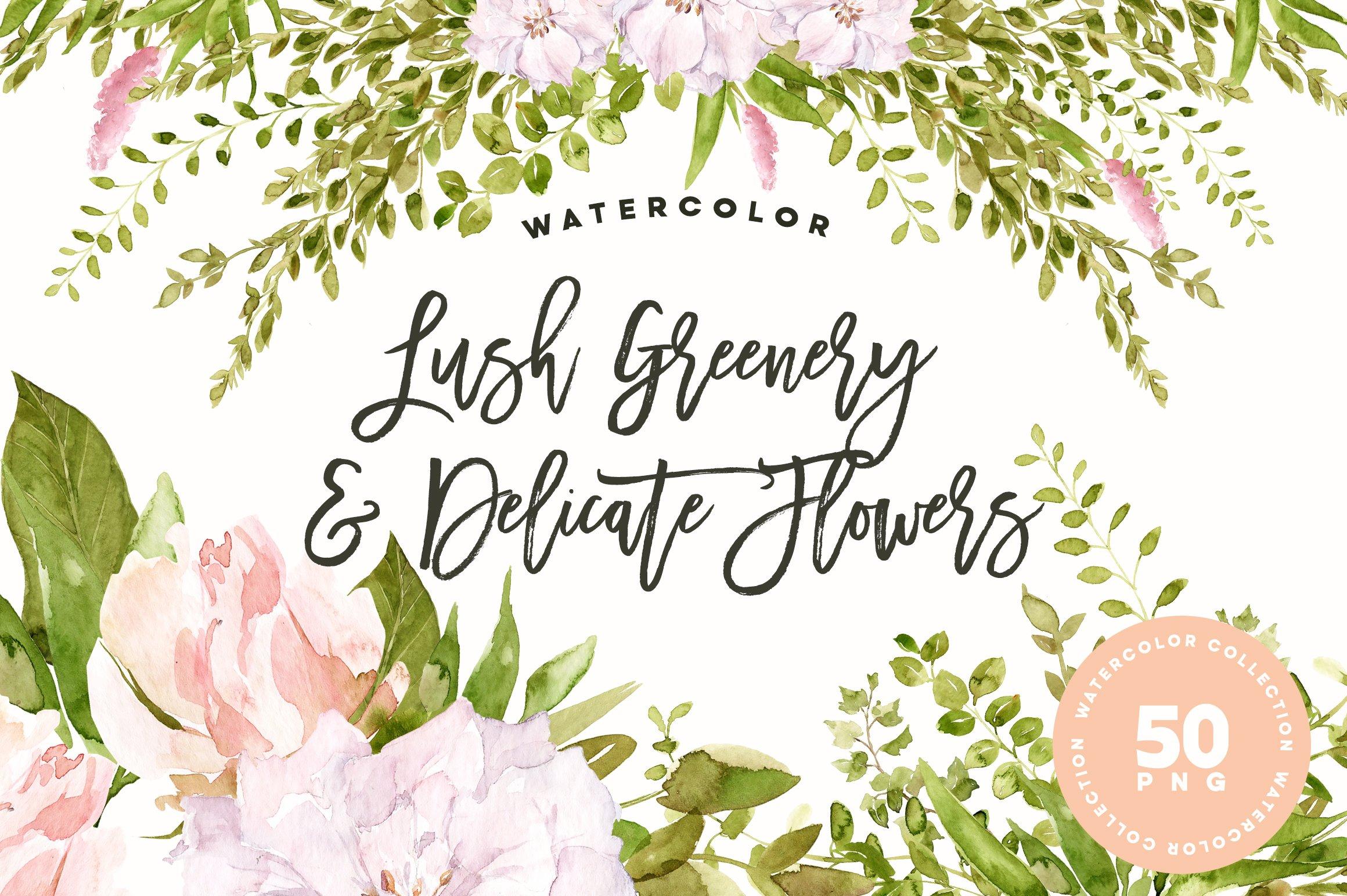 Lush Greenery & Delicate Flowers ~ Illustrations ~ Creative Market