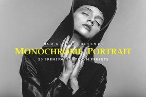 Monochrome Portrait LR Presets