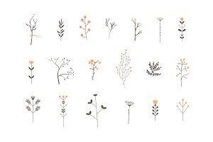 Romantic Branches Vector Set