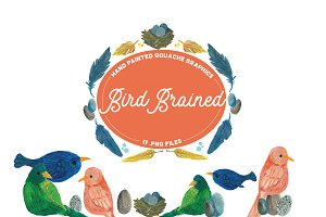 Bird Brained -Handpainted Graphics