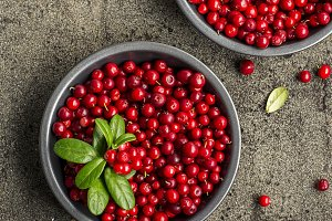 Fresh ripe forest northern cranberries or cowberry, lingonberry in ceramic cups of different size and color on a gray stone aged background for the concept of organic natural healthy food. Top View.