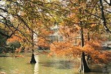 Crystal Palace, Retiro Park, Madrid,