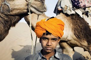 Indian boy with his camels