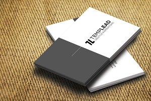 Corporate Business Card SE0280