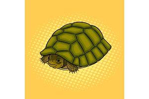 Turtle hiding in shell pop art vector illustration