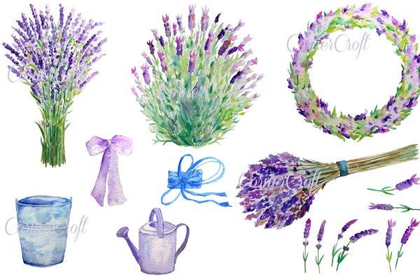 Watercolour Lavender Clip Art