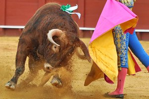 Bullfighting Typical Spanish