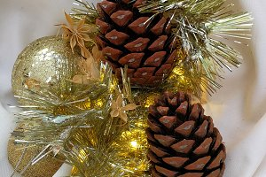 Christmas card with pine cones