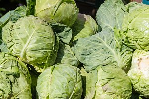 Green cabbage at market