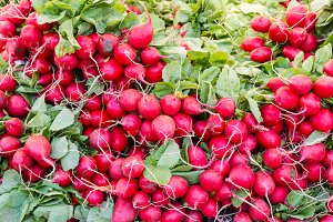 Red radishes at market