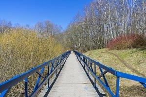 Footbridge over the marshy ravine