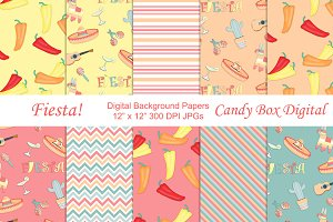 Fiesta Background Papers