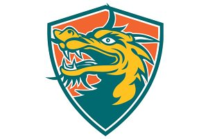 Chinese Dragon Head Shield Retro