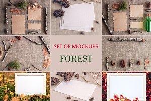 Set Mockups. FOREST