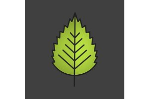Birch leaf color icon