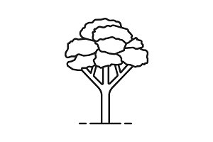 Maple tree linear icon