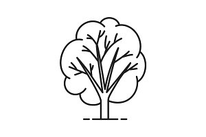 Tree linear icon