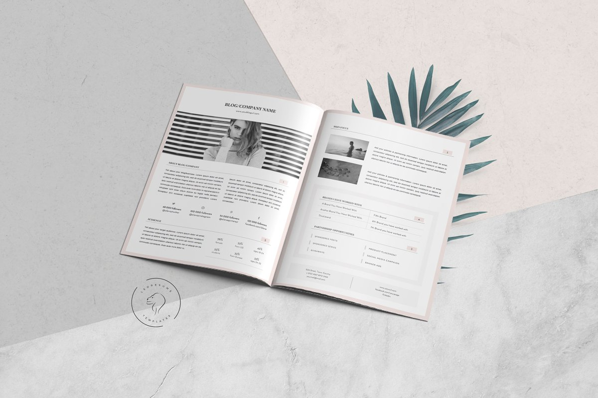 Media Kit Template - 3 Pages