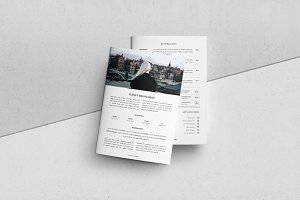3 Page Press Kit for Bloggers
